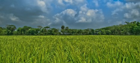 Νέα προειδοποίηση της Κομισιόν στα κράτη που προστατεύουν με νομοθεσία την αγροτική τους γη