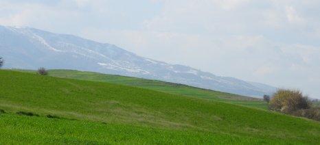 Παράταση για την παραχώρηση χρήσης αγροτικών ακινήτων σε κατά κύριο επάγγελμα αγρότες ή άνεργους