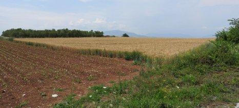 Eπίκαιρη ερώτηση Κασαπίδη σχετικά με τη σημασία του μεγέθους των γεωργικών εκμεταλλεύσεων
