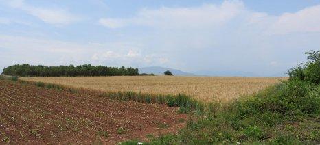 Από 4 Μαρτίου έως και 15 Μαΐου οι αιτήσεις για το πρόγραμμα ενίσχυσης μικρών γεωργικών εκμεταλλεύσεων