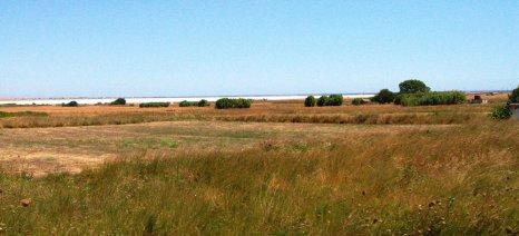 Οδηγίες εξόφλησης των μισθωμάτων σε όσους κτηνοτρόφους έχουν κατανεμημένα βοσκοτόπια στη Λήμνο