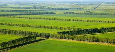 Παραχώρηση δημόσιας γης έως 8 στρμ. με προτεραιότητα στις κτηνοτροφικές εγκαταστάσεις