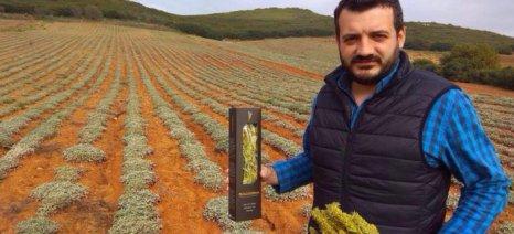 Με εξαγωγική «Philosophia» ο Χρήστος Χρόνης πουλά στις διεθνείς αγορές το τσάι του