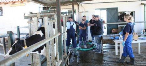 Νέο εκπαιδευτικό πρόγραμμα γαλακτοπαραγωγών από την ΚΡΙ-ΚΡΙ
