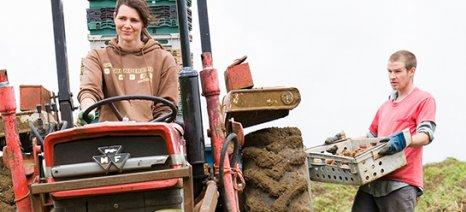 Δόθηκαν δικαιώματα βασικής ενίσχυσης από το εθνικό απόθεμα αξίας 28,5 εκατ. ευρώ σε 30.935 γεωργούς