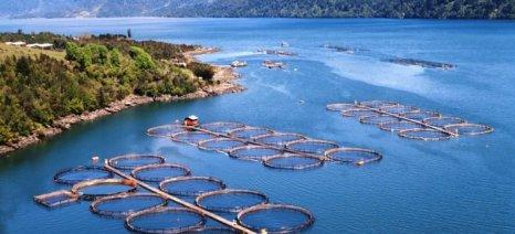 Ενισχύσεις de minimis σε συνεταιρισμένους και ιδιώτες υδατοκαλλιεργητές
