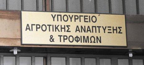 Στο υπουργείο έρχονται την Παρασκευή οι αμπελουργοί της Κρήτης
