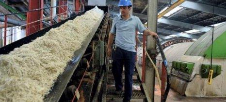 Πρωτοφανής η πίεση στον ευρωπαϊκό κλάδο ζάχαρης - Ιταλία και Ελλάδα ζητούν λύσεις
