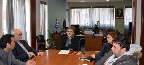 Ψάχνουν λύση για τους κατσίγαρους στην Κρήτη