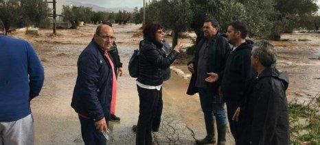 Αναγγελία ζημιάς στα Μέγαρα για βροχή και χαλάζι - Στο 100% εκτιμά τις απώλειες ο Παπαβασίλης