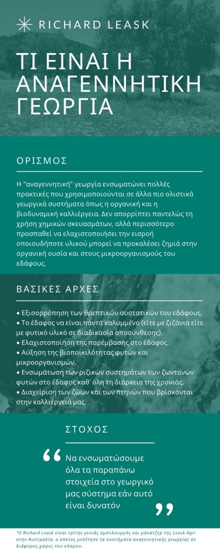 anagennitiki georgia